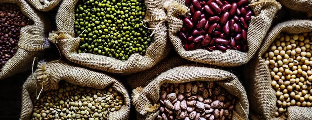aliments riches en fibres